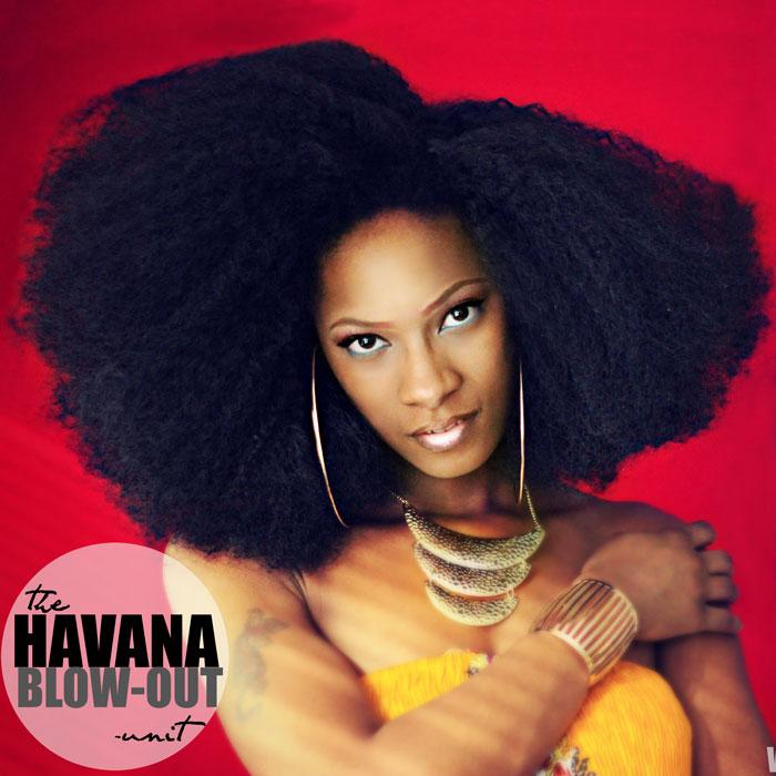 Fingercomber Havana Blow Out Unit